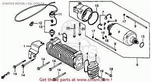Honda Cb450sc Nighthawk 1982  C  Usa Starter Motor    Oil