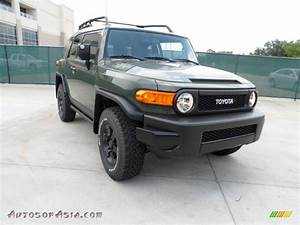 2011 Toyota Fj Cruiser Trail Teams Special Edition 4wd In Army Green Photo  35