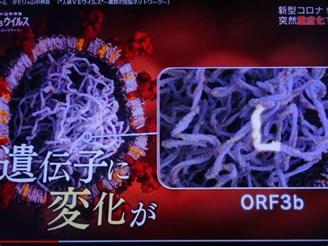 コロナ ウイルス 自然 に 治る
