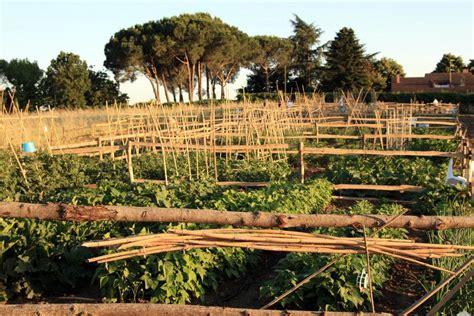 giardini di veio territorio orti urbani cos 236 la green economy conquista