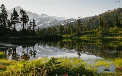 Besondere Bäume Für Den Garten by Die 61 Besten Sch 246 Ne Hintergrundbilder Der Natur Und Des