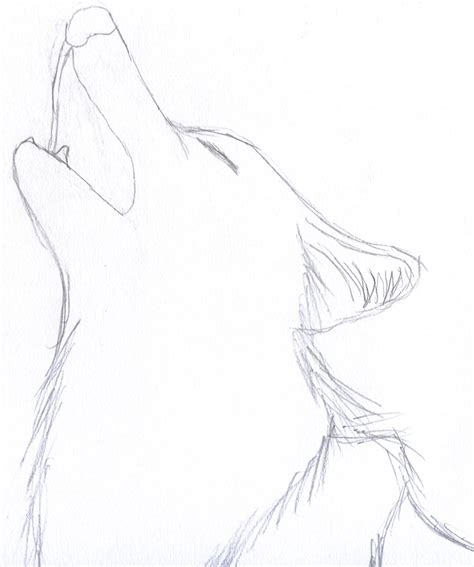 Best Easy Wolf Drawings Ideas And Images On Bing Find What You