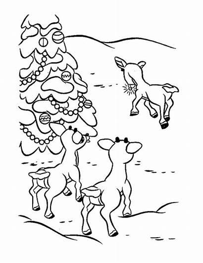Coloring Reindeer Rudolph Printable Rudolf Santa Colorir