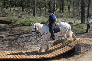 Podest Pferd Selber Bauen : extreme trail gut heinrichshof ~ Yasmunasinghe.com Haus und Dekorationen