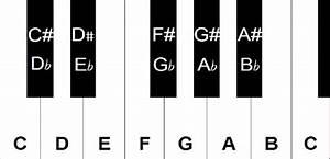 Sharps  Flats  U0026 Naturals In Sheet Music
