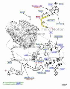 Brand New Oem Radiator Coolant Overflow Hose 2000