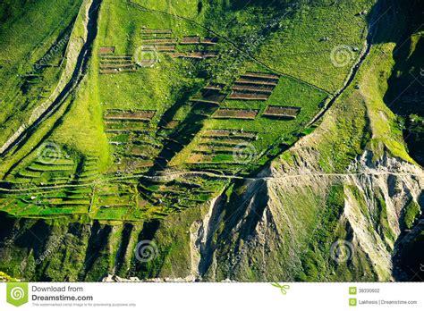 green terrace texture  himalaya mountains india stock