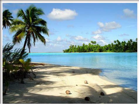 gambar pemandangan pantai  pohon kelapa gambar hidup