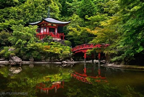 Top 10 Beautiful Forests Across the World | Places To See ...