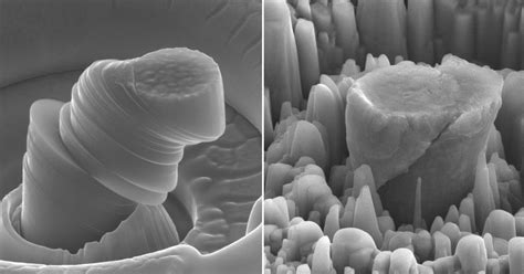 light and strong metal ucla researchers create exceptionally strong and