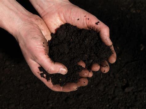 kompost selber machen selbst den kompost anlegen so spart geld und erh 246 ht seine lebensqualit 228 t