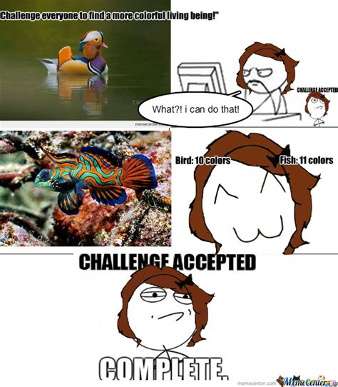 Challenge Completed Meme - challenge complete first meme by morikitsune meme center