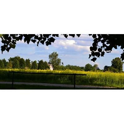 File:Mäksa Parish Tartu County Estonia - panoramio (13
