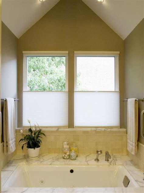 cellular shades suit  homes