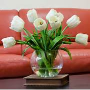 Real Touch White Tulip Faux Arrangements Centerpieces For Home Decor Tulips On Pinterest Pink Tulips Parrots And White Tulip Bouquet Living Room Design Furniture Coffee Table Round Decoration Ideas With Pics Photos Arrangement Wallpapers Flowers Tulip Flower Wallbest