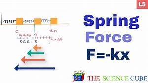 Spring Force  What Is The Work Done By The Force F   -kx  5