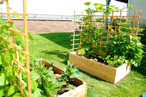 Best practices in urban gardening | agribusiness philippines. Pretty Backyard Gardening And Climate Change | Backyard ...