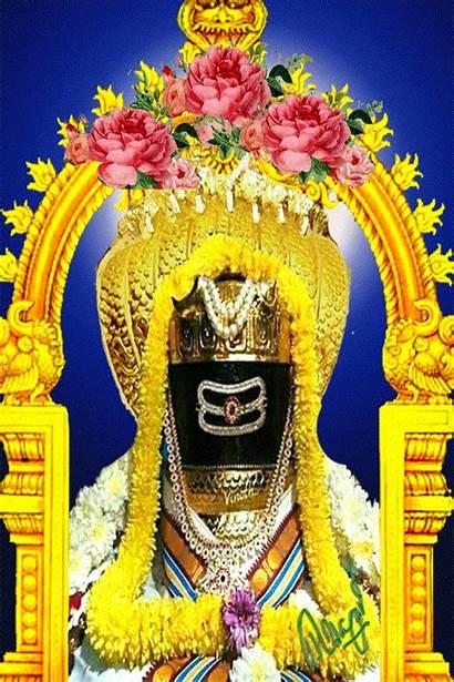 Pooja Sagar Lord Hindu Krishna Shiva