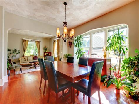 plants  decorate  living room boldskycom