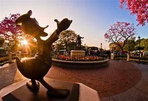 "Tom Bricker's ""One More Disney Day"" Disneyland Photos ..."