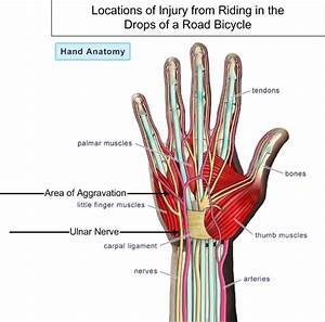 First Aid  Weekly Injury Thread For January 12  2017