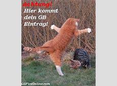 Lustige GBEinträge Bilder Lustige GBEinträge GB Pics