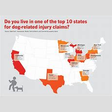 Top Ten States For Dog Bite Claims In 2016  State Farm