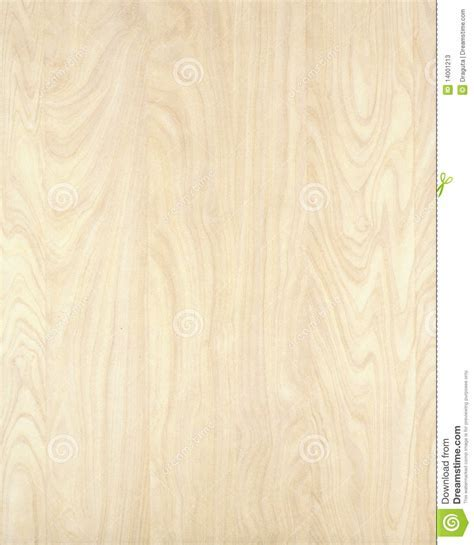 Wood Texture Background Birch 10 Stock Image   Image of