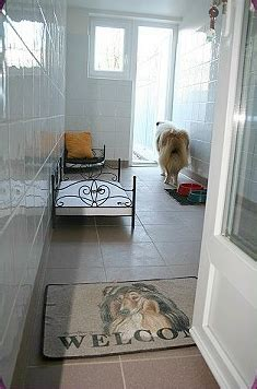 chambre de chien griffin bouledogue français la pension canine quot le bois