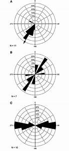 Rose Diagrams Of Paleocurrent Trends And Fractures From