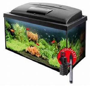 Was Fressen Molche Im Gartenteich : axolotl die kleinen wassermonster ~ Orissabook.com Haus und Dekorationen