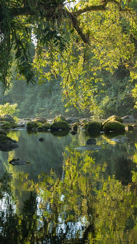 rio itamambuca reflecting rainforest  sunset serra