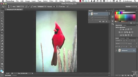 adobe photoshop cs tutorial color replacement