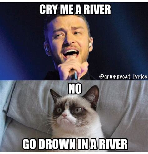 Justin Timberlake Meme - grumpy cat sings cry me a river by justin timberlake funny things pinterest cats drown