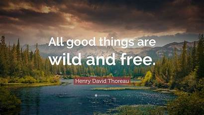 Nature Wild Things Quotes Thoreau Quote Henry