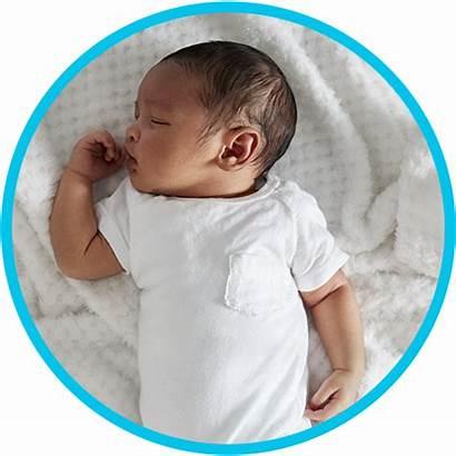 Infant Toddler Program Sleeping Children Daycare Environments