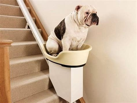 world s stairlift things