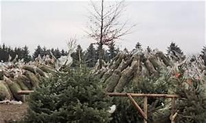 Weihnachtsbaum Kuenstlich Wie Echt : schwibbogen oder wie ein bergschmied mehr licht in die ~ Michelbontemps.com Haus und Dekorationen