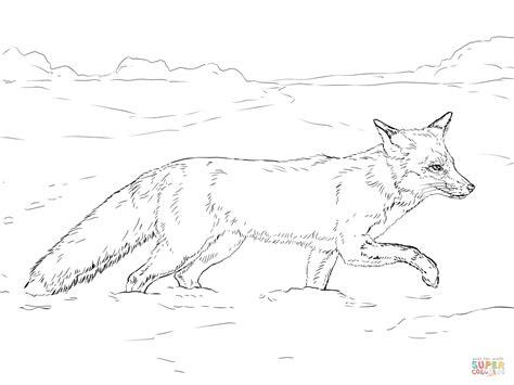 Desenho De Raposa Vermelha Andando Na Neve Para Colorir