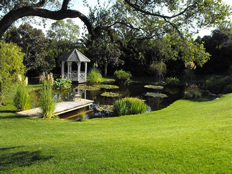 Garden Pond : Garcia Rock And Water Design Blog