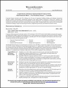 resume sample for a cfo With cfo resume examples