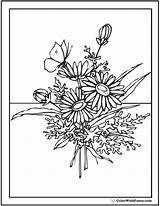 Coloring Pages Flower Bouquet Flowers Wildflower Daisy Pdf Butterfly Printable Adults Vase Wild Wildflowers Designs Embroidery Drawn Template Customize Posies sketch template
