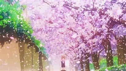 Anime Header Spring Season Seasonal Sbs Coming