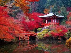 deco jardin zen interieur 2 le jardin japonais encore With decoration exterieur jardin zen pierre 5 le jardin japonais encore 49 photos de jardin zen