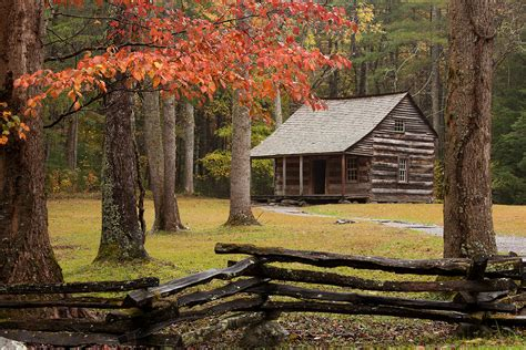 carter shields cabin cades cove great smoky mountains
