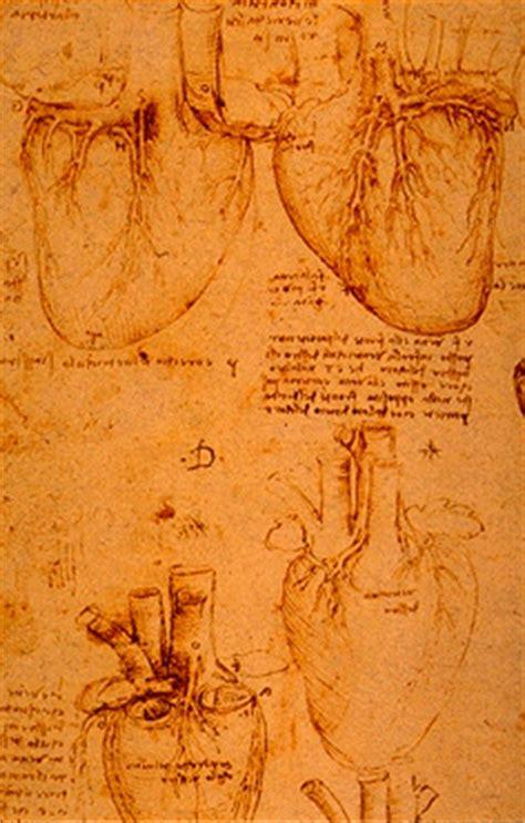 leonardo da vinci anatomical drawings heart
