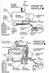 2000 Buick 3800 Series 2 Engine Vacuum Diagram