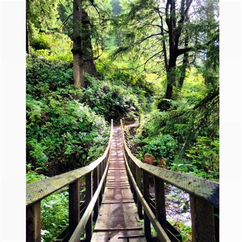 best 28 oswald west state park cing cascade ramblings