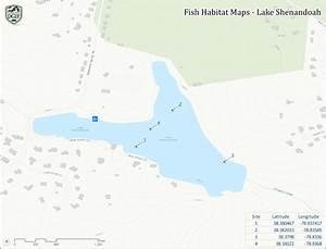 Lake Shenandoah