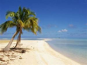 Desert island - Beaches & Nature Background Wallpapers on ...
